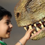 An Indian child plays with a park staff member wearing a dinosaur costume at the Adlabs Imagica theme park at Sangewadi some 100 kms south-east of Mumbai on April 20, 2013. India's most elaborate theme park opened this week with special-effect Hindu gods and Bollywood-themed rides, aiming to tap a thirst for family entertainment among the country's rising middle-class.  Adlabs Imagica, which cost about USD 294 million to create, opened its doors to the public on Thursday between the western cities of Mumbai and Pune, with capacity for 10,000 to 15,000 visitors a day. AFP PHOTO/ INDRANIL MUKHERJEE        (Photo credit should read INDRANIL MUKHERJEE/AFP/Getty Images)